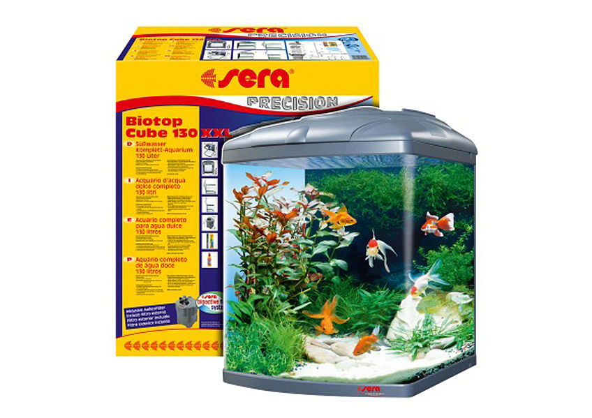 Big system aquarium also for goldfish