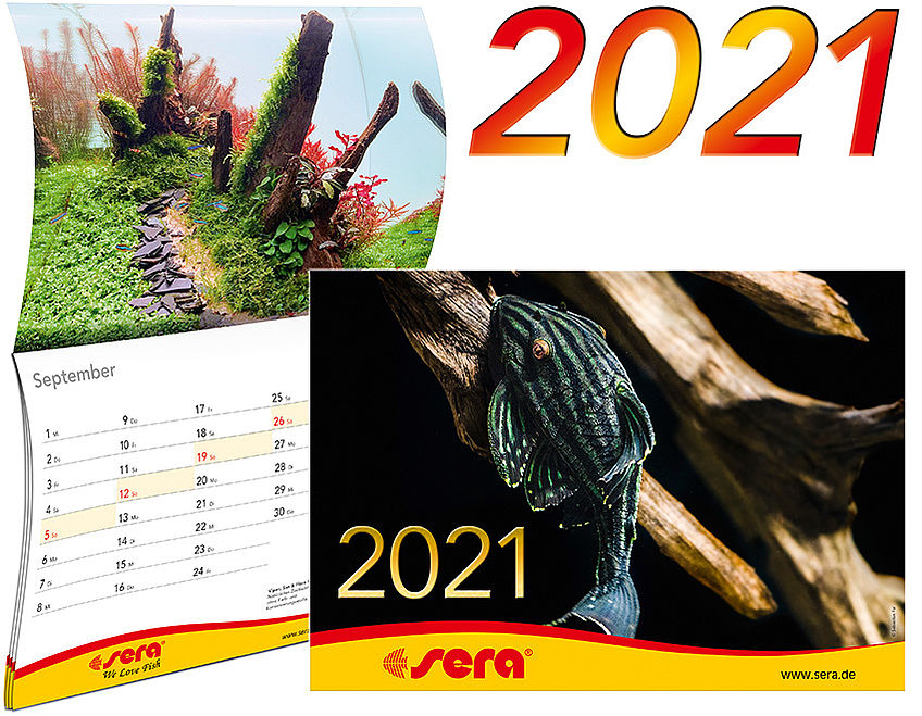 The new sera calendar is available
