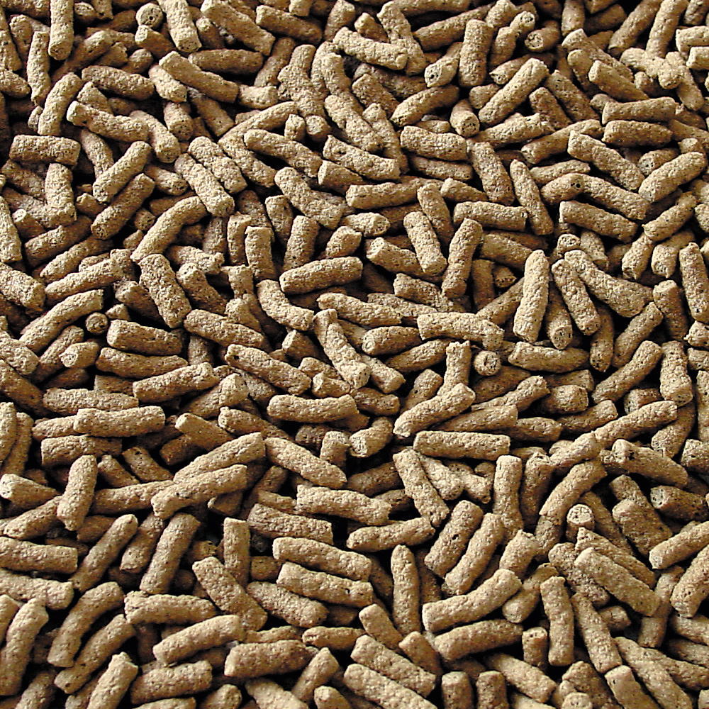 pellet para carassius y koi, pond granulat, marca Sera
